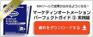 マーケティングオートメーションパーフェクトガイド③実践編